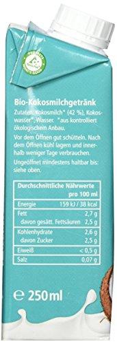 ONE NATURE organic OYI Pur Kokosmilch Bio-Getränk, 12er Pack (12 x 250 ml) - 5